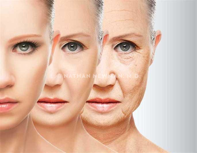 Three pictures of a woman in different stages of her life as aging progresses.